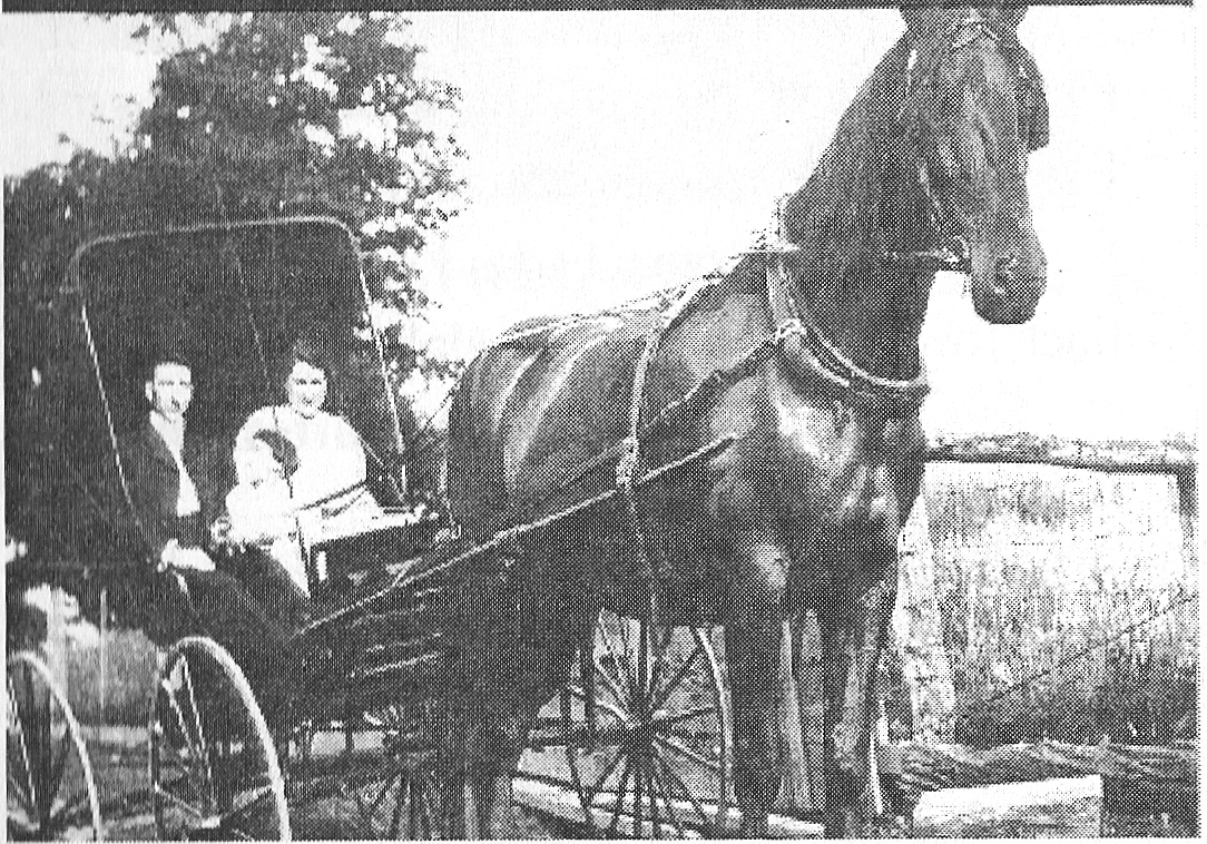 Earl Korns' family on a buggy ride