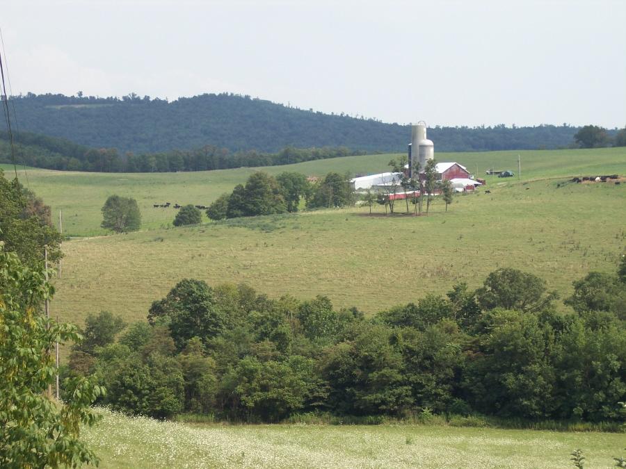 Lepley farm viewed from Dan Korns, Jr. farm