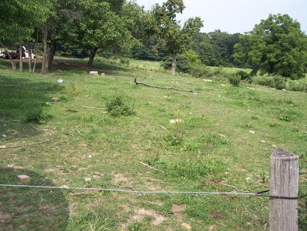 Sturtz Cemetery, Southampton Township, Somerset County, PA.