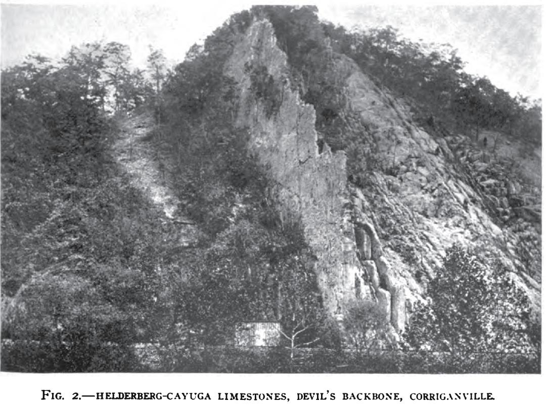 Devil's Backbone (Fig. 2)